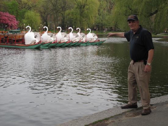 Boston Citywalks: The Swan Boats