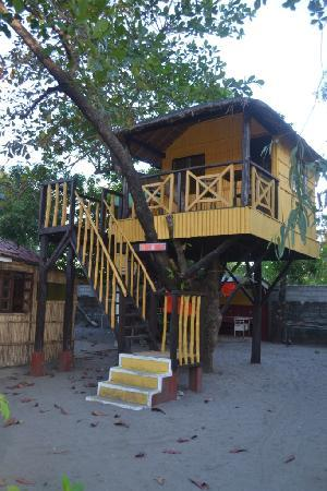 Iba, Filippine: tree house