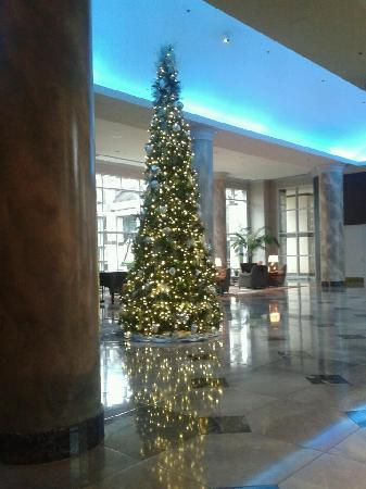 Omni Dallas Hotel at Park West: Christams tree