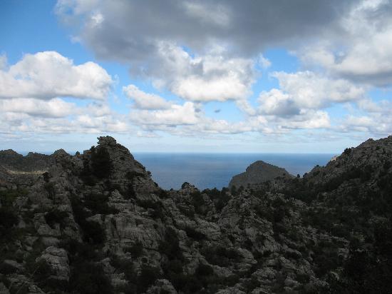 The Northwest Coast: monti e mare