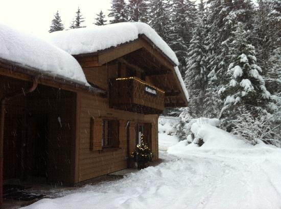 Chalets La Roche & L'Isere- Skiology: La Roche in lots and lots of snow!