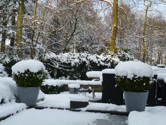 Bed & Breakfast Speelmansrei: WINTERTIME garden