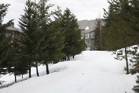 Greystone Lodge: Ski-in Ski-Out Trail