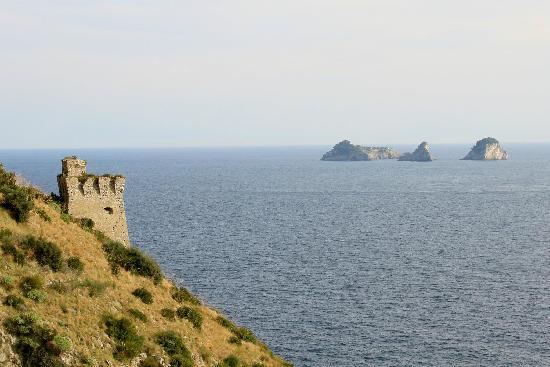 Ruin Near Crapolla Cove