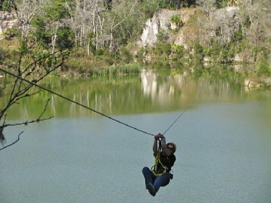 Howard Johnson Inn - Ocala FL: The Canyons Zipline and Canopy Tours are a great family adventure!