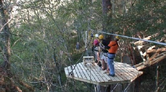 Howard Johnson Inn - Ocala: Zip from platform to platform over breathtaking scenery