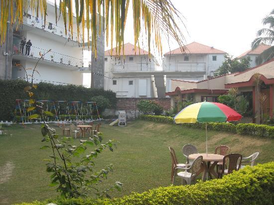 Hotel Dolphin: the garden