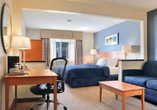 Comfort Inn Oklahoma City: King Suite