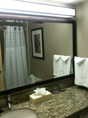 Embassy Suites by Hilton West Palm Beach Central: granite counters in the bathroom