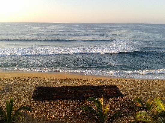 Playa Ventura, México: Desde el hotel el buzo