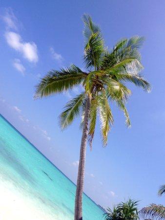 Kuramathi Island Resort: Strand