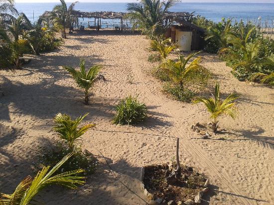 Playa Ventura, Mexiko: Vsita desde mi habitación