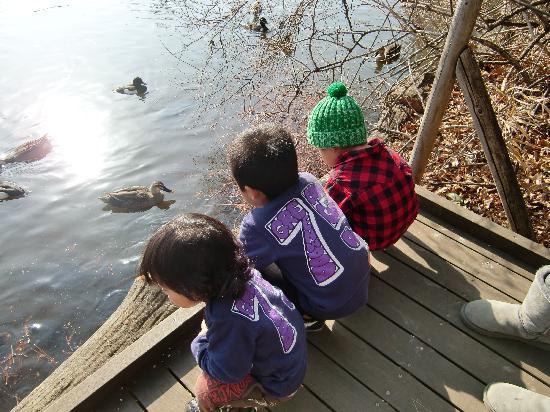 Shakujii Park: 子供には冒険♡
