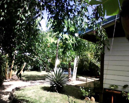 Fare Maorina : Mon jardin