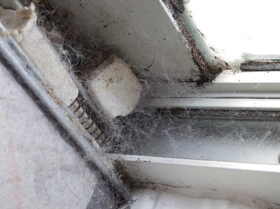Southern Dunes Golf Club : Spidesr webs in window and patio doors