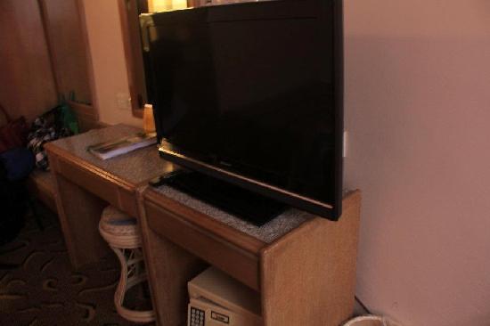 Hotel Rosa Passadena: Tv