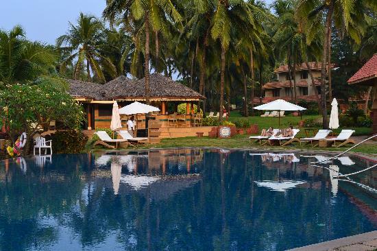 Vivanta by Taj - Fort Aguada, Goa: pool side