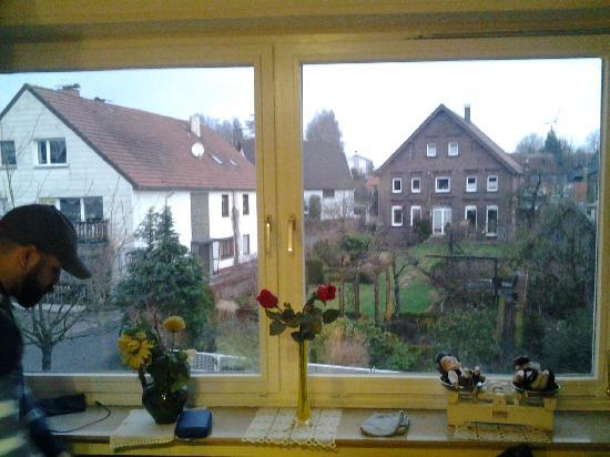 Hotel Gasthaus Rogge: View from the room