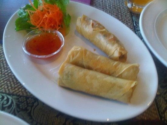 Shelley's Thai Restaurant: Veg Spring Rolls