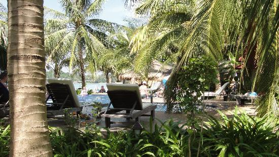 Noble House Beach Resort : view of Pool