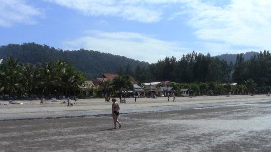 Noble House Beach Resort: beach at Noble House