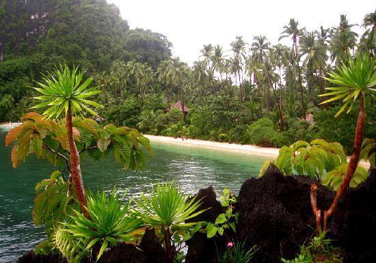 Malapacao Private Island: the beach