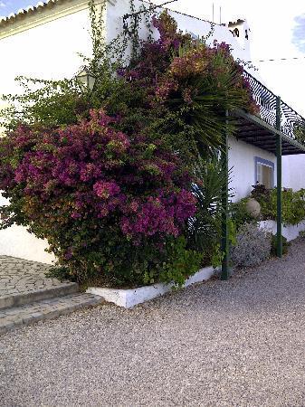 Casa Vale del Rei: A garden view