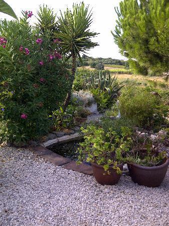 Casa Vale del Rei: A garden view 2