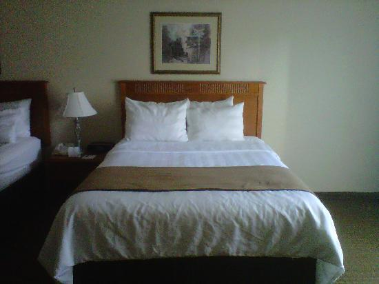 Best Western Plus Siding 29 Lodge: Queen bed in standard room