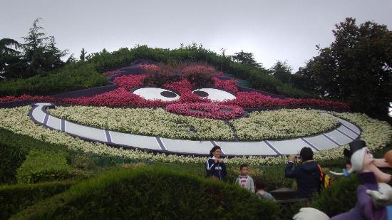 """Disneyland Park: la stregatto di """"alice nel paese delle meraviglie"""