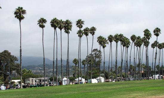 海岸线公园