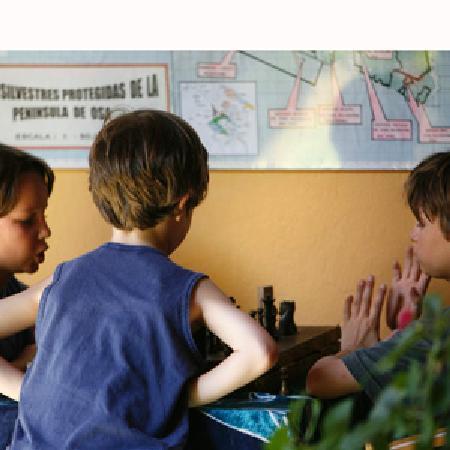 Iguana Lodge: Chess