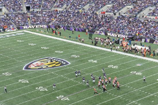 M&T Bank Stadium: View