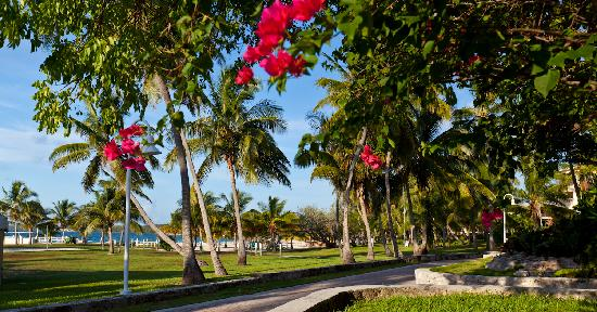 Abaco Beach Resort and Boat Harbour Marina: Situated on 54 tropical acres along the beautiful Sea of Abaco