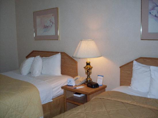 Comfort Inn Zion: Queen bed