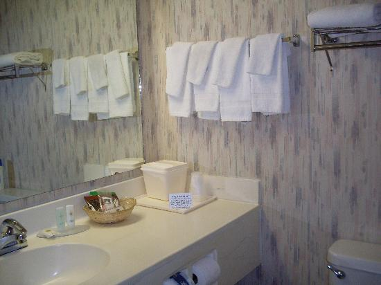 Quality Inn Zion: Bathroom