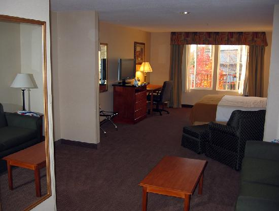 BEST WESTERN PLUS Twin View Inn & Suites: Room 236