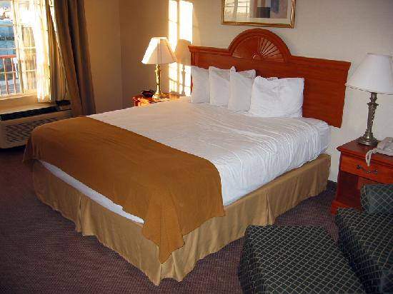 Best Western Plus Twin View Inn & Suites: Pillows