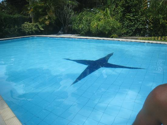Leijay Resort: Pool
