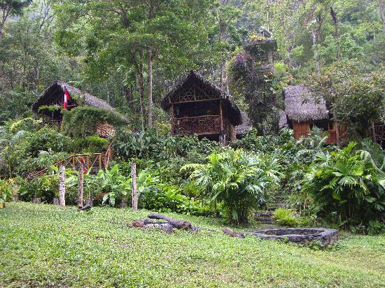 Pampa Hermosa : Cabins & Macaw