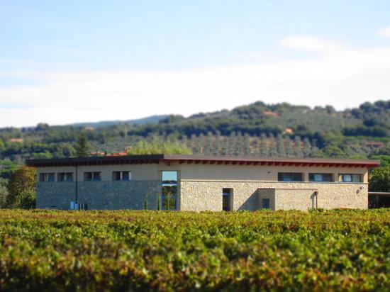 Azienda Agricola Serni Fulvio Luigi