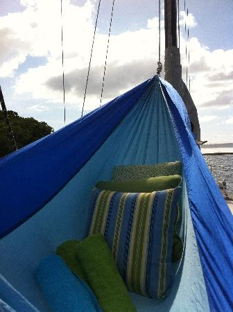 marauder sailing charters   private tours  hammock on the bow  doesn u0027t get hammock on the bow  doesn u0027t get much better    picture of marauder      rh   tripadvisor