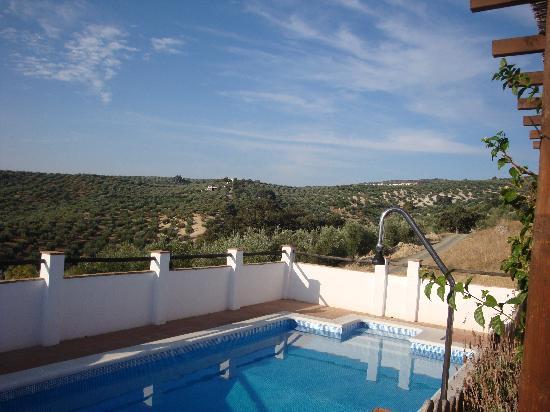 Cortijo Molino Los Justos: Our private pool