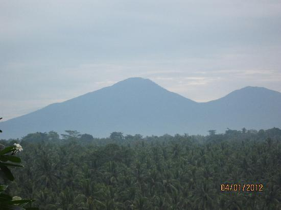 Taman Bebek Resort & Spa: Nice view of domant volcanoes in early morning