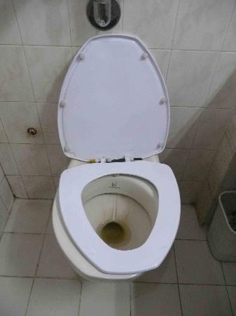 Hotel Mountain: トイレの便座を付け替えてあるけど、留具が左右違ってグラグラ