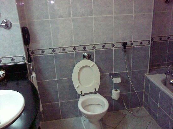 باناري هوتل: Toilet