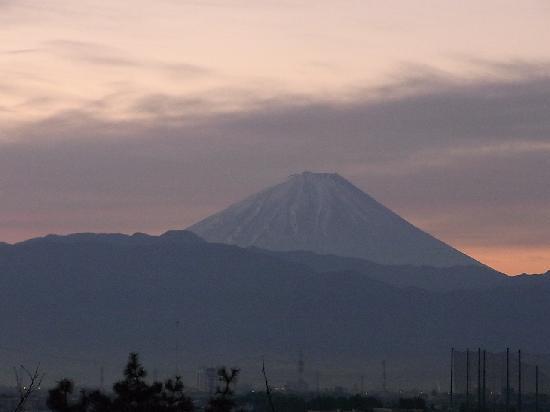 Hotel Kaminoyu Onsen : 部屋から見た富士山