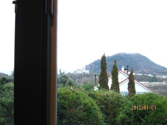 Cafe Green: 窓辺