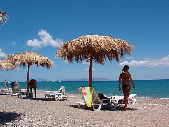 Le Palme Garden: La Meravigliosa Spiaggia