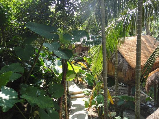 Binlang Ethnic Village: Trees provide cooling shelter